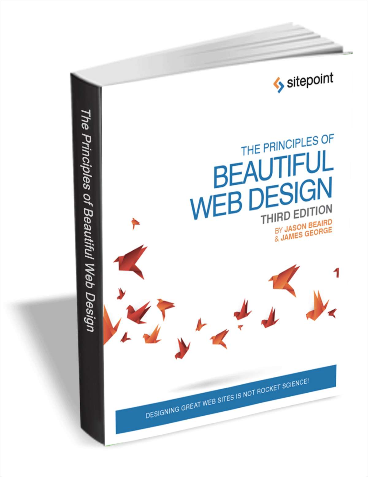 The Principles Of Beautiful Web Design 3rd Edition