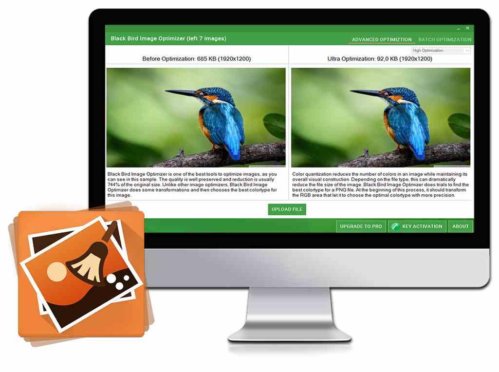 Black Bird Image Optimizer Pro 100 Discount Sharewareonsale